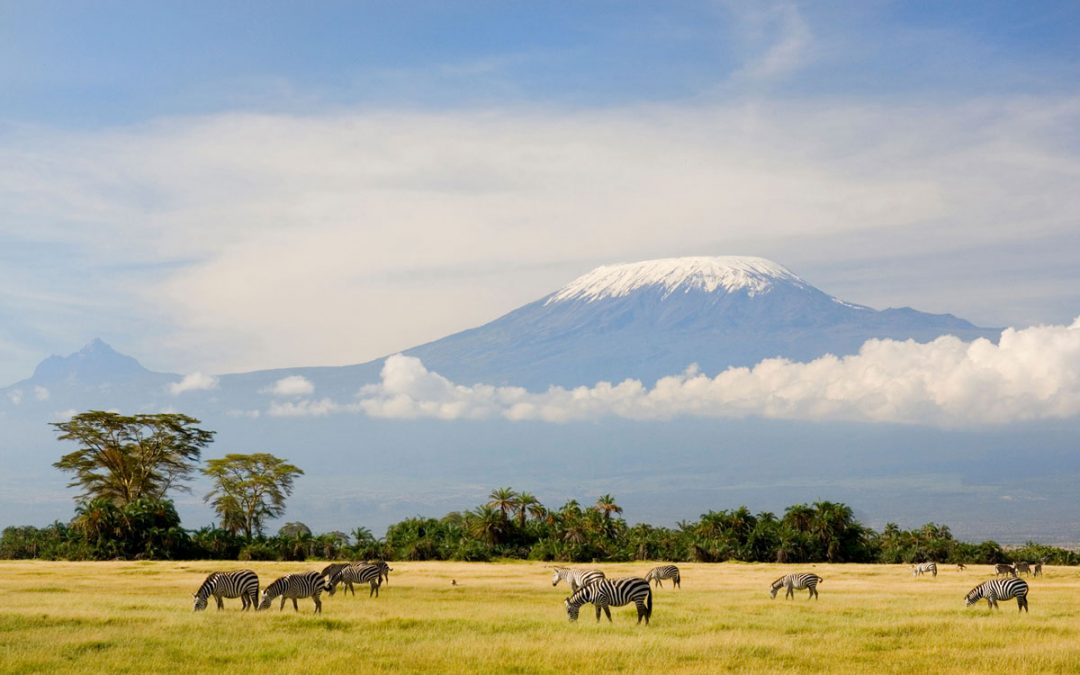 Consider a trip to Tanzania instead of Europe